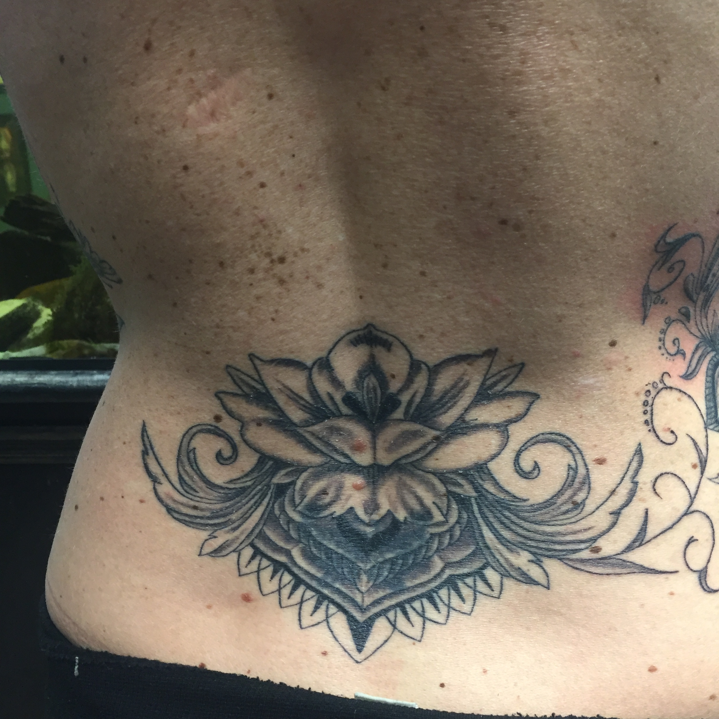 back tattoo black and gray flower