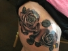 black and gray roses hip