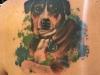 faithful dog tattoo